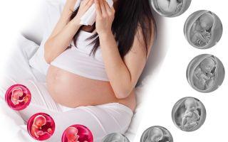 Как лечить насморк (заложенность носа) при беременности 1 триместр