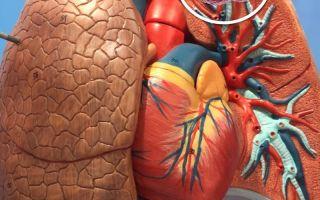 8 причин появления рака лёгких. Будьте осторожны, курящие