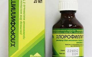 5 преимуществ хлорофиллипта при гайморите и способы применения