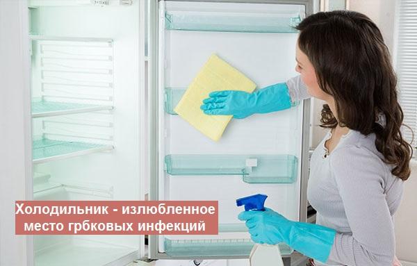 грибок в холодильнике